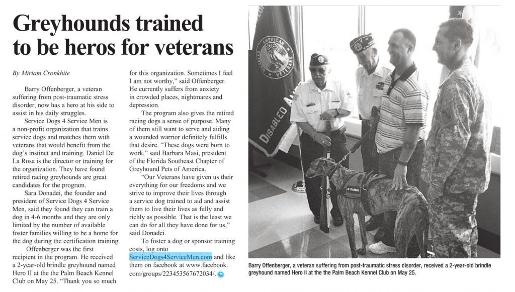 Greyhounds Trained to ...
